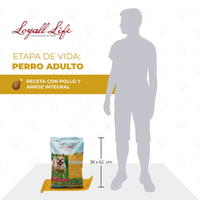 Loyall Life Dog Food Adulto Chicken & Brown Rice  Alimento Perro Adulto Pollo Arroz