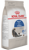 Royal Canin Alimento Gatos Indoor Adult Gatos Interiores Croqueta iPos