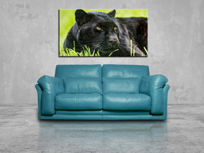 Black Panther Safari Animals Canvas Print Giclee