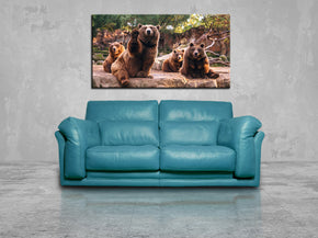 Bears Animals Canvas Print Giclee