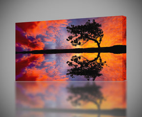 Sunset Tree Canvas Print Giclee