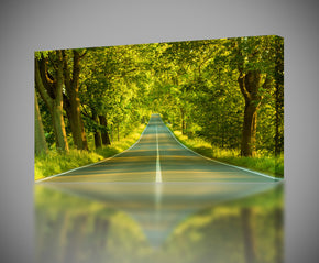 Trees Avenue Canvas Print Giclee