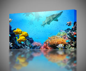 Tropical Fish Shark Reef Canvas Print Giclee