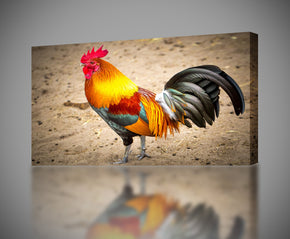 Rooster Canvas Print Giclee
