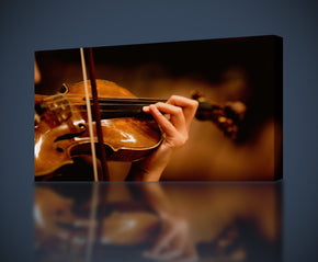 Violin Musical Instruments Canvas Print Giclee