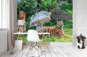 Tiger Woven Self-Adhesive Removable Wallpaper Modern Mural M194