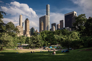 Leisure in Central Park