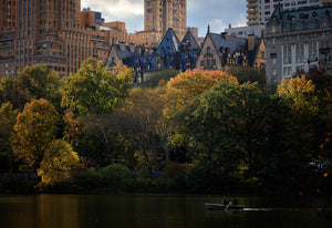 Colors of Fall in Central Park