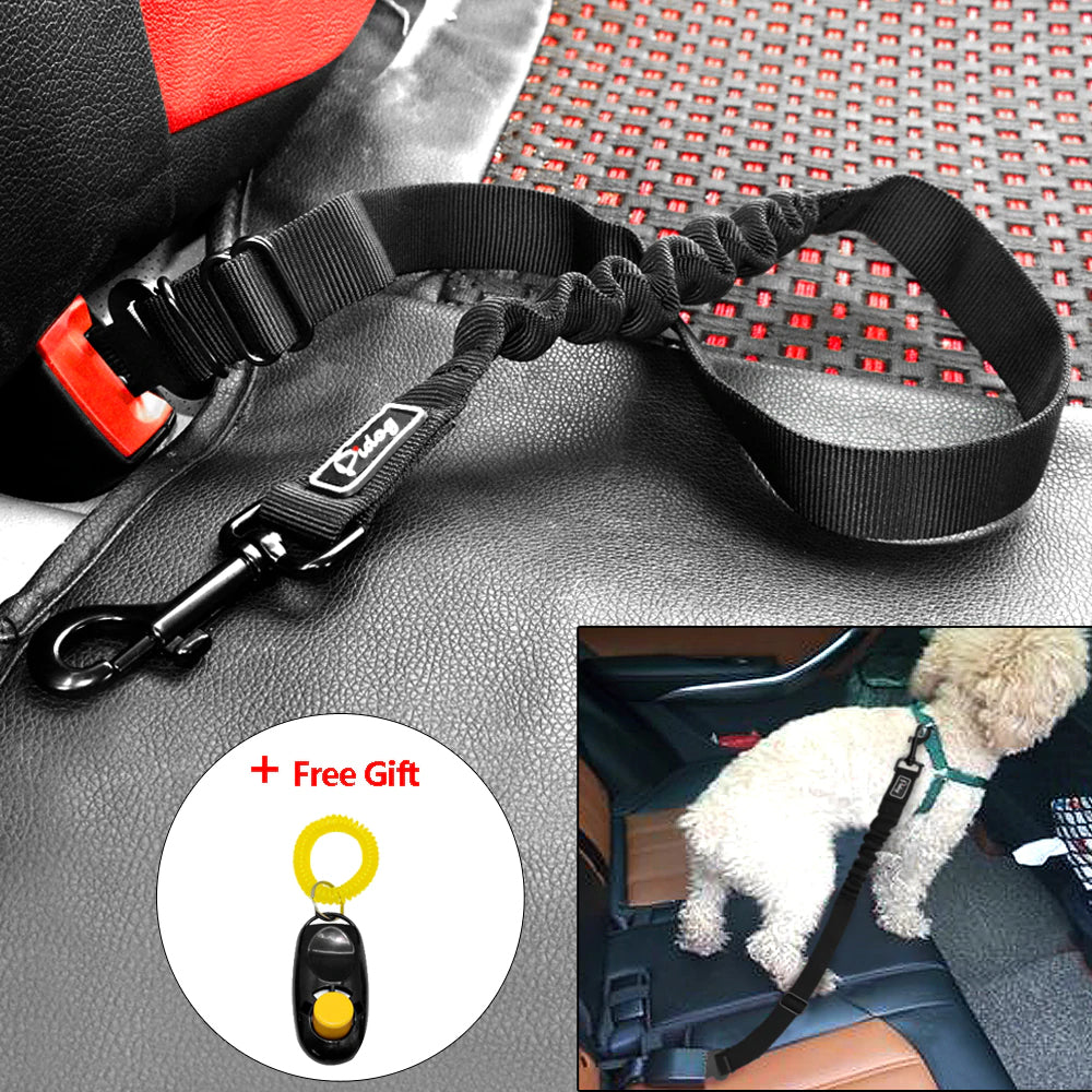 Nylon Car Restraint with Elastic Bungee Leash