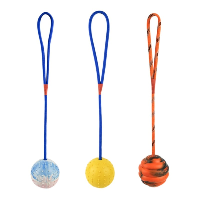 Rubber Ball On Rope  Dog Toys