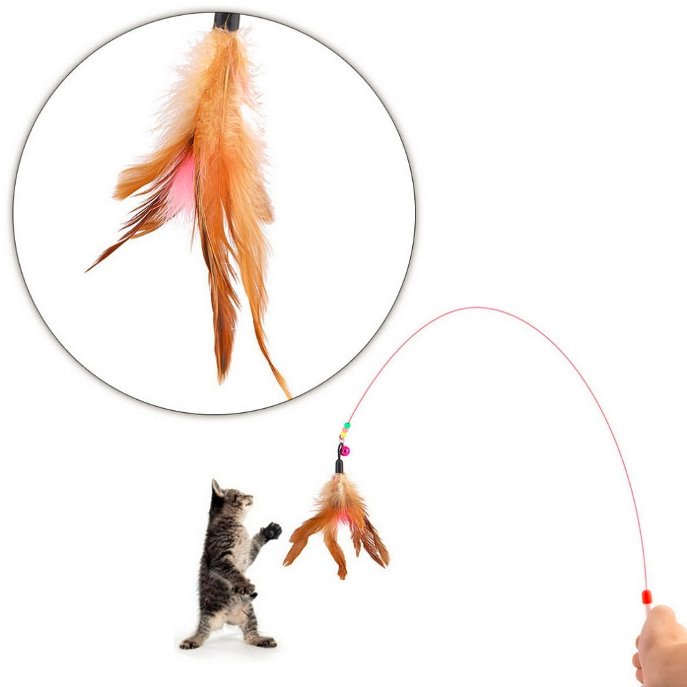 Steel Wire Feather Plastic Wand Toy for Cats