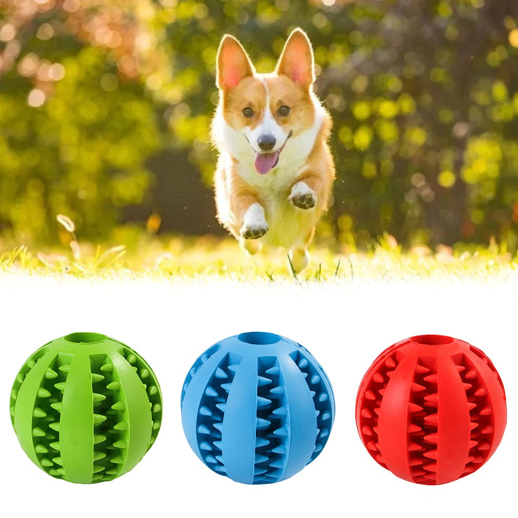 Pet Dog Chew Toys