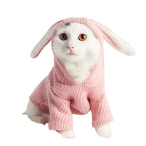 French Hooded Coat for Cat