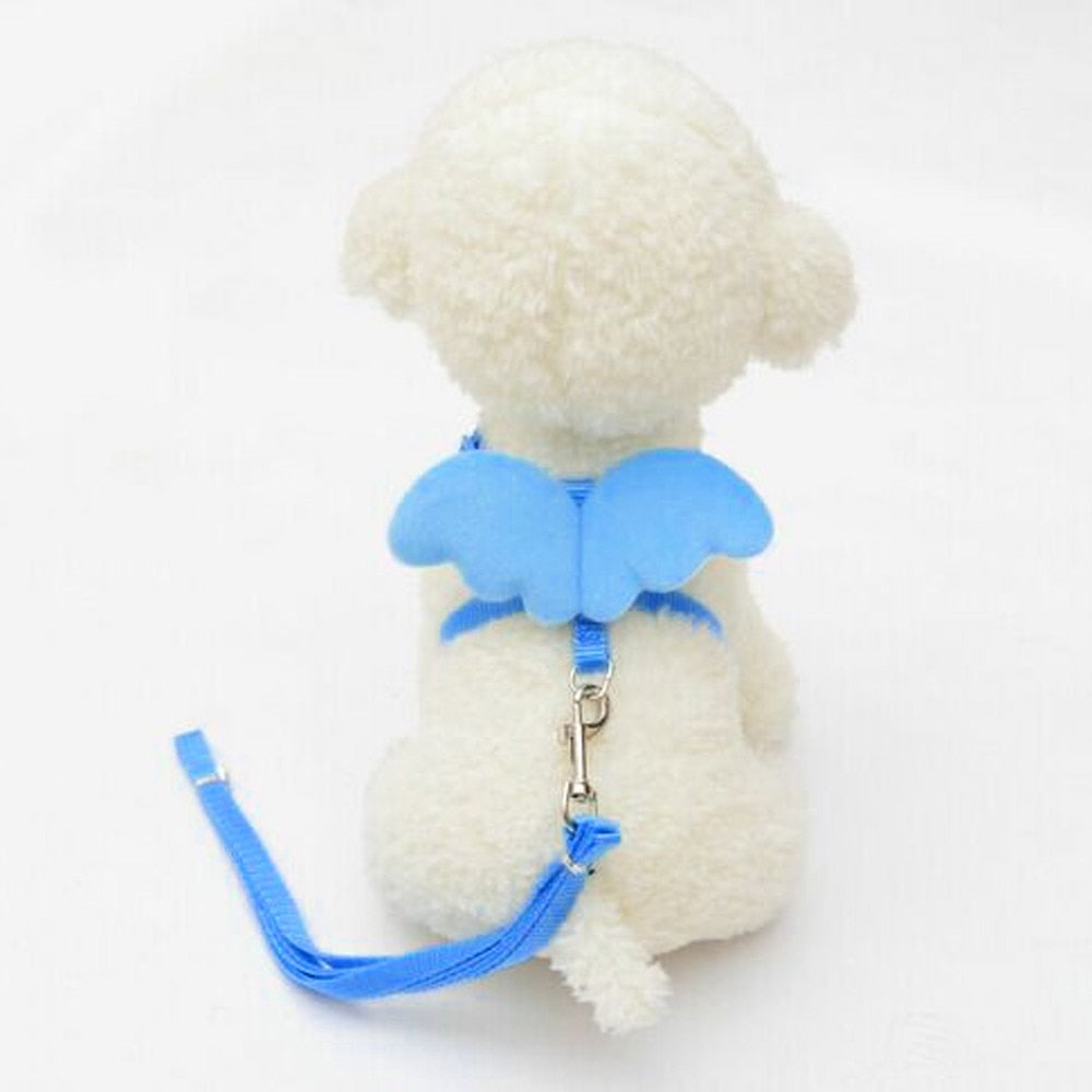 Cute Angel Pet Dog Leads and Collars