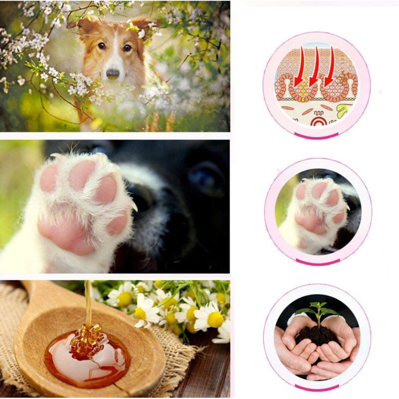Dog Paw Care  Moisturizing Protection Forefoot Cream