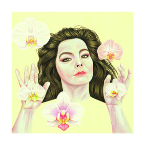 A portrait of the musician, Bjork (Colour Pencil on Card) - Giclee Print