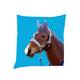 Personalised Horse Cushions