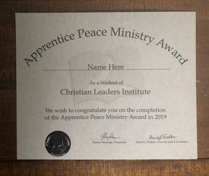 Apprentice Peace Ministry Award (Tier 1)