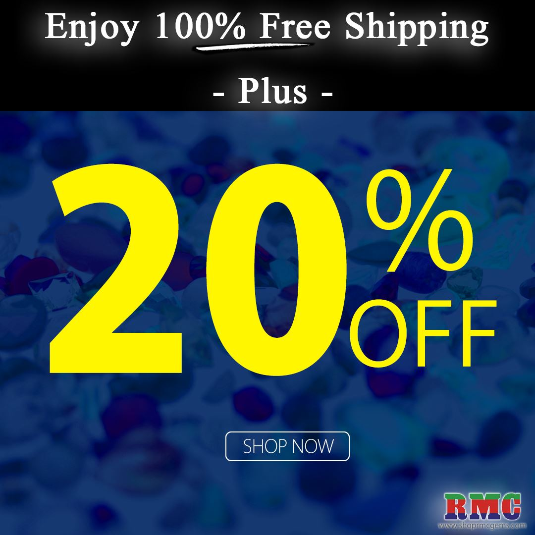 Enjoy 100% FREE SHIPPING ON ALL ORDER  - Plus - 20% OFF