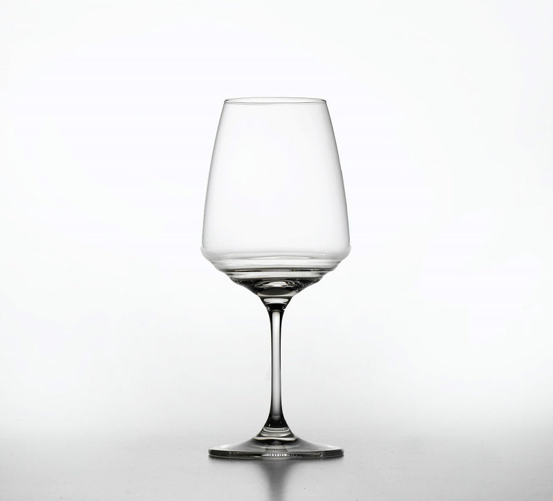 NUOVE ESPERIENZE GOBLET NE04500 in lead-free crystal glass cl 45 h cm 210 for white wines - 2 pieces packaging