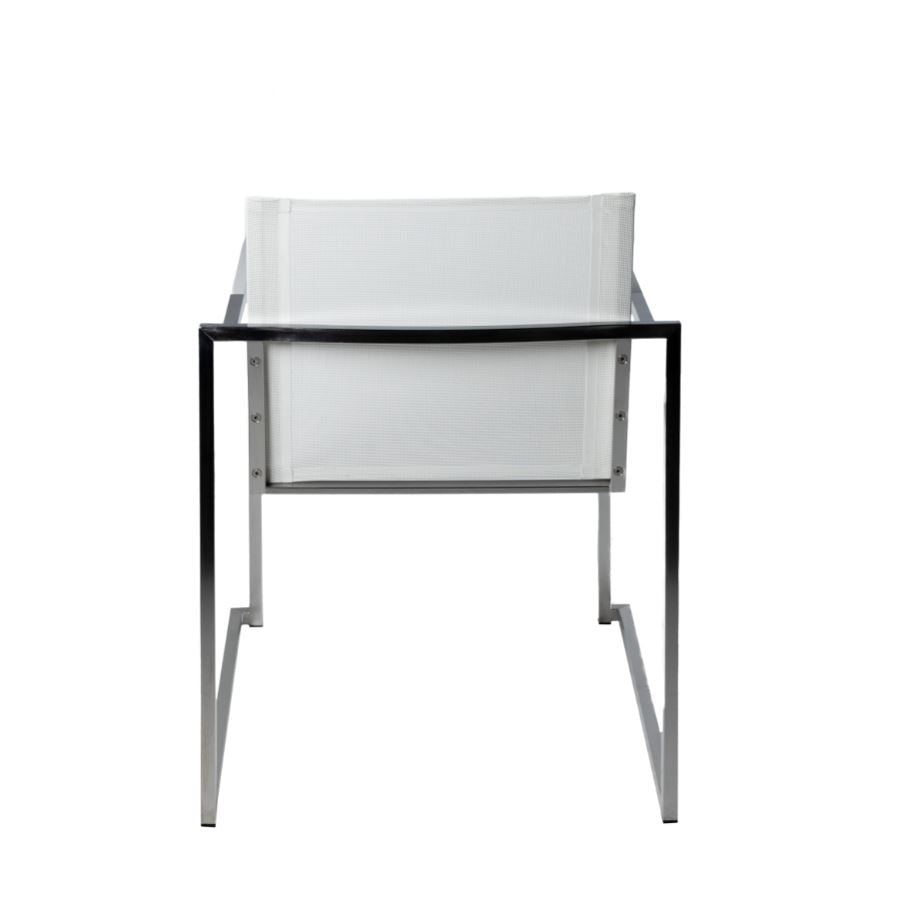 Adonis Dining Arm Chair Chair - White
