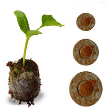 Load image into Gallery viewer, thegsnd 100pcs Count 30mm with Jiffy Peat Pellets Seed Starting pallet,garden tool Seeds Starter,seedling soil block  <span class=money>$69.8</span> Agricultural Tools, Farmer Tools, Farming Tools Agricultural & Gardening <span class=money>$81.8</span>