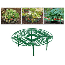 Load image into Gallery viewer, thegsnd 10Pcs Plant Plastic Tool Strawberry Growing Circle Support Rack Farming Frame Gardening Vine  <span class=money>$67.8</span> Agricultural Tools, Farmer Tools, Farming Tools Agricultural & Gardening <span class=money>$79.8</span>