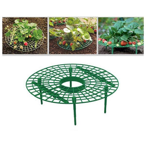 thegsnd 10Pcs Plant Plastic Tool Strawberry Growing Circle Support Rack Farming Frame Gardening Vine  <span class=money>$66.8</span> Agricultural Tools, Farmer Tools, Farming Tools, Gardening Tools Agricultural & Gardening <span class=money>$78.8</span>