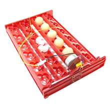 Load image into Gallery viewer, DIY 96 Eggs Bird Incubator Egg Rack Tray automatic 24 Egg Incubator Quail Parrot Incubation Tool Size 43 * 28 cm - thegsnd