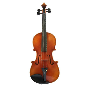 Antonio Stradivari 1715 Model Violin FPVN13 with Canvas Case and Brazil Bow - thegsnd