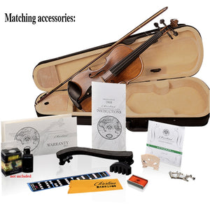 New Christina E02 Maple Violin 4/4 for beginner use musical instruments,handmade ebony violin parts,with fiddle case,bow,rosin - thegsnd
