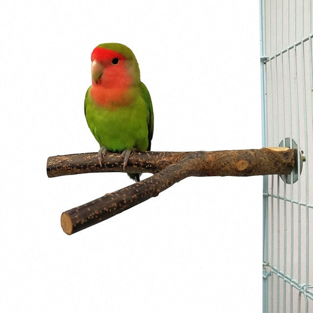 Pet Parrot Branch Perches Stand Wood Fork Stand Rack Pet Bird Mouth Grinding Claw Grinding Wooden Rest Holder Toy Pet Supplies-Wooden Toy-thegsnd-Wood-China-thegsnd
