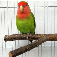 Load image into Gallery viewer, Pet Parrot Branch Perches Stand Wood Fork Stand Rack Pet Bird Mouth Grinding Claw Grinding Wooden Rest Holder Toy Pet Supplies-Wooden Toy-thegsnd-thegsnd
