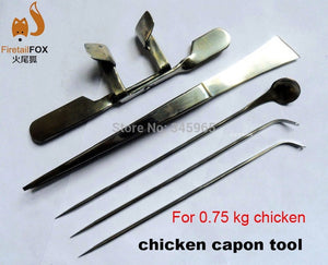Stainless steel knife chicken capon capon tool for 0.75kg chicken - thegsnd