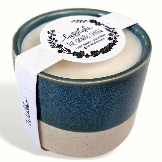 Willow | Growing Candle, 10 oz soy wax