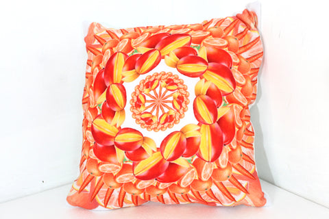 "Pillow Orange 16"" square"