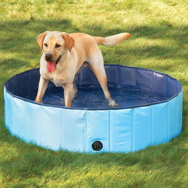 Portable Dog Pool - Pet Swimming Foldable Indoor/Outdoor Bathing Tub