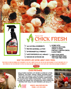 Chick Fresh Concentrate Special 50% off! Eliminate Chicken Coop Odor & Ammonia 2 Concentrates with a FREE Sprayer & FREE Shipping. Fill 2 Gallons!