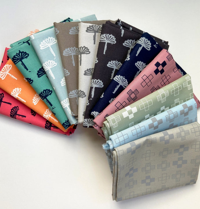 Blueberry Park fat Quarter bundle
