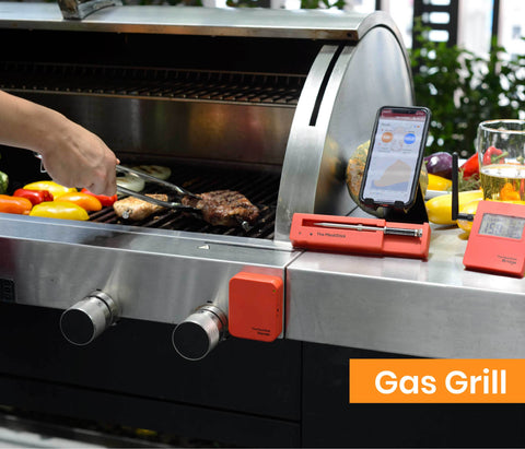 Gas Grill with The MeatStick Extender Set