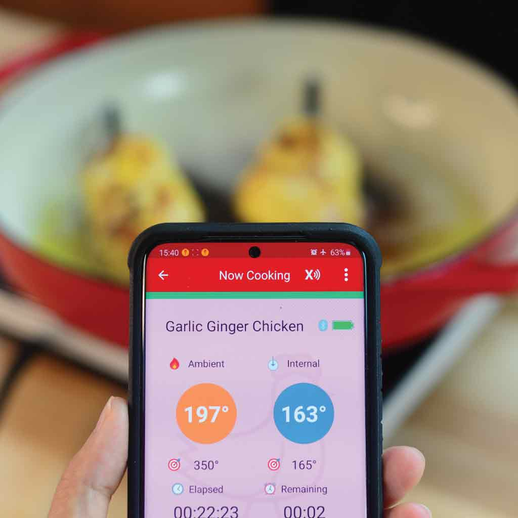 The MeatStick App Interface