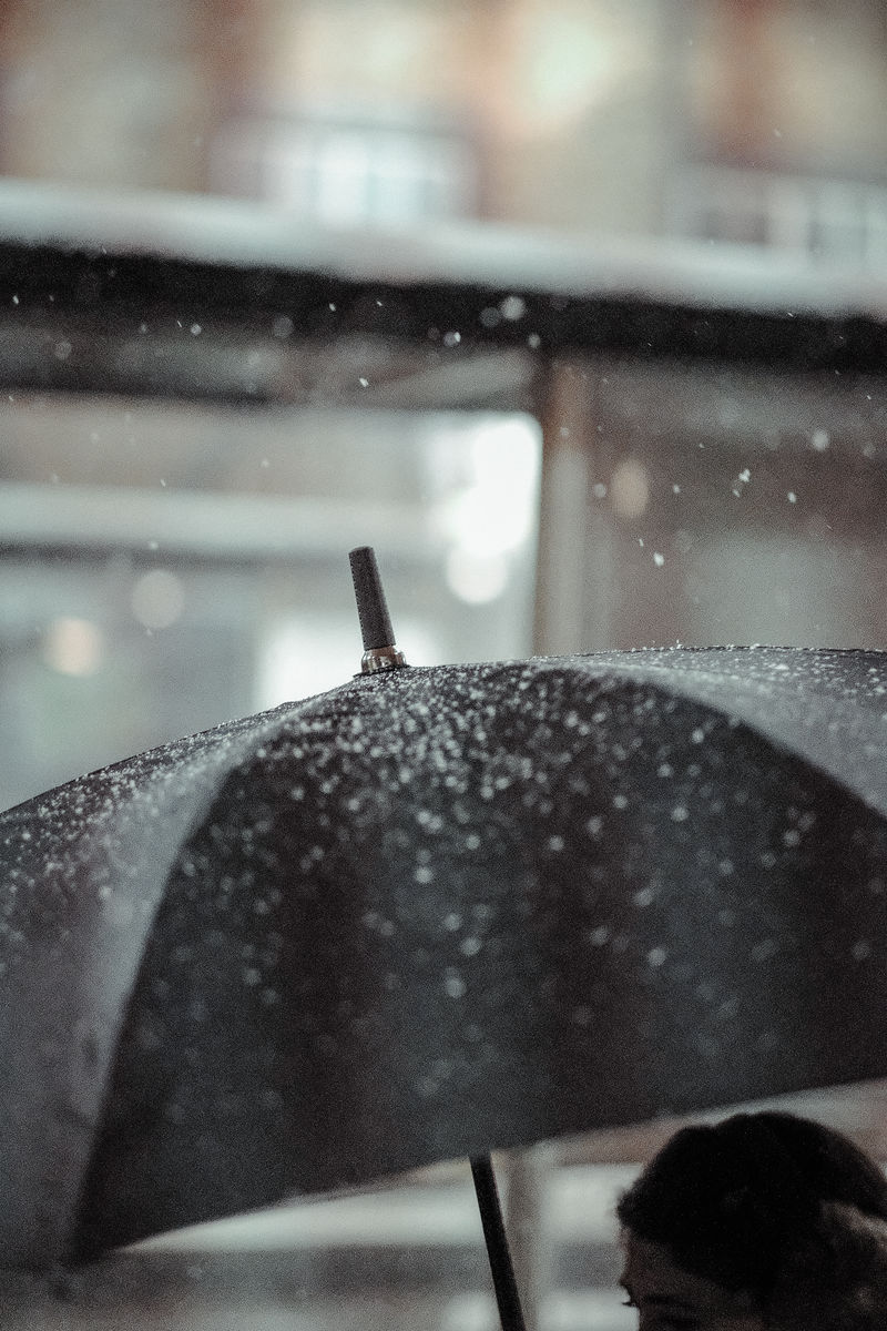 Snowfall Mayfair, Black Umbrella