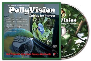 DVD - PollyVision - Strictly for Parrots