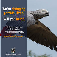 Donation: Make a Change for Parrots