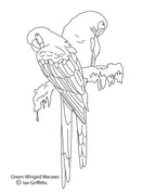 Free coloring page - Great-Green Macaws