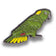 Collector's Enamel Pin Badges - no 18. Yellow-naped Amazon