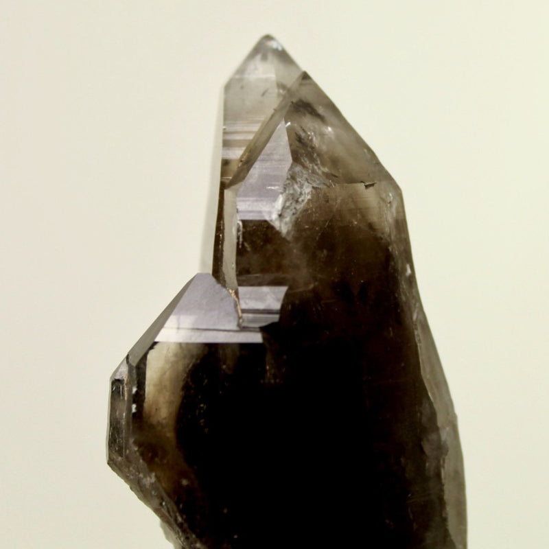 "4"" Smoky Quartz Crystal from Lincoln County NM"