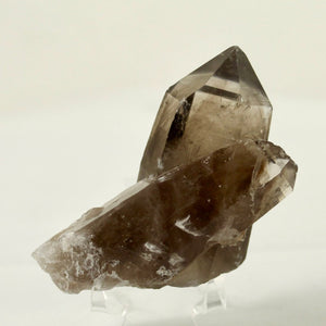 "3.25"" Smoky Quartz Crystal from Lincoln County NM"