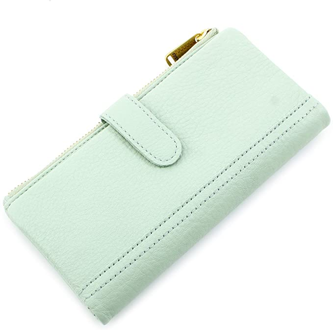 Fossil Erin Tab Clutch in Pastel Green