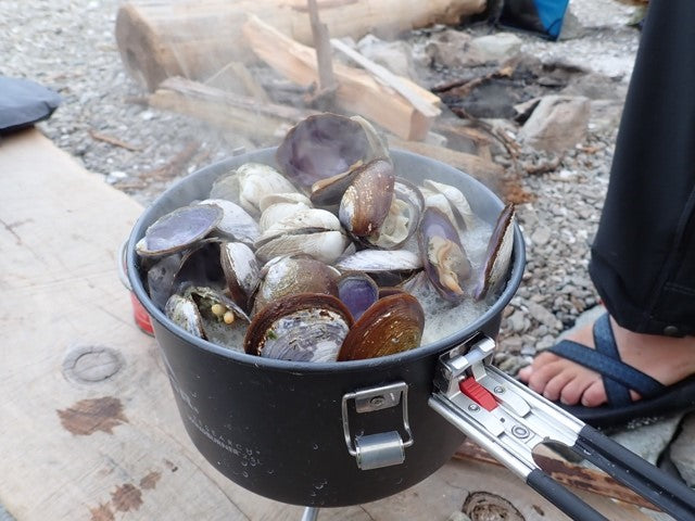 Clams cooking